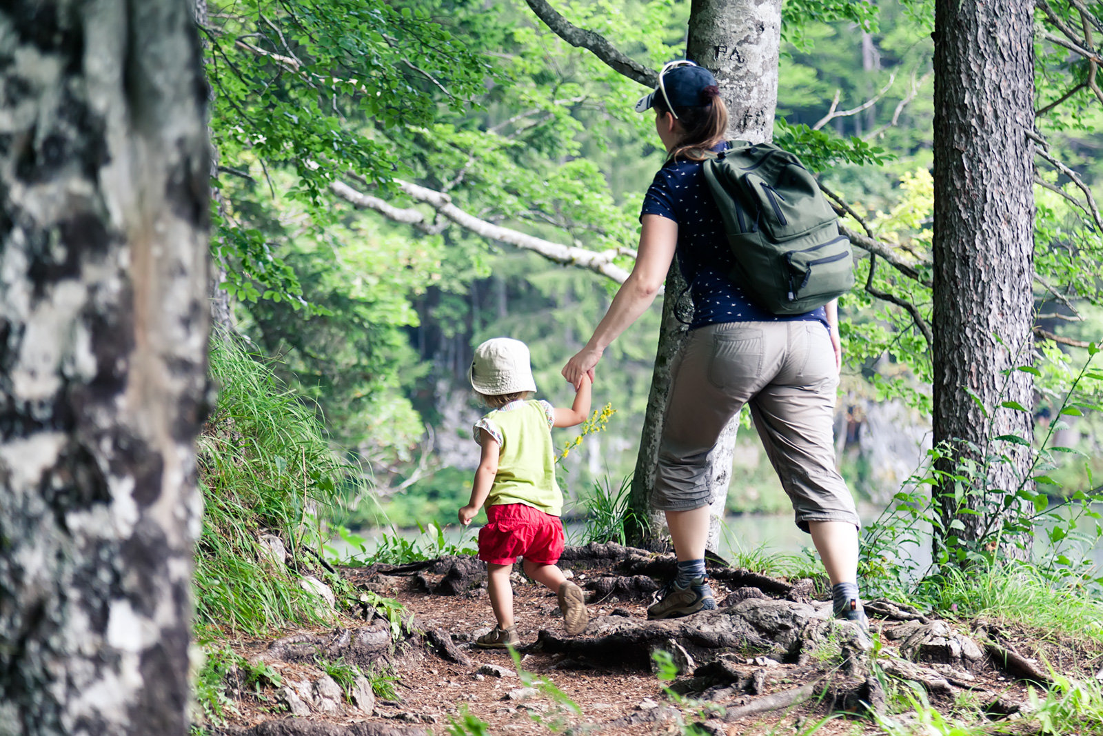 Hiking in the woods is one of the many activities you can pursue in the region.
