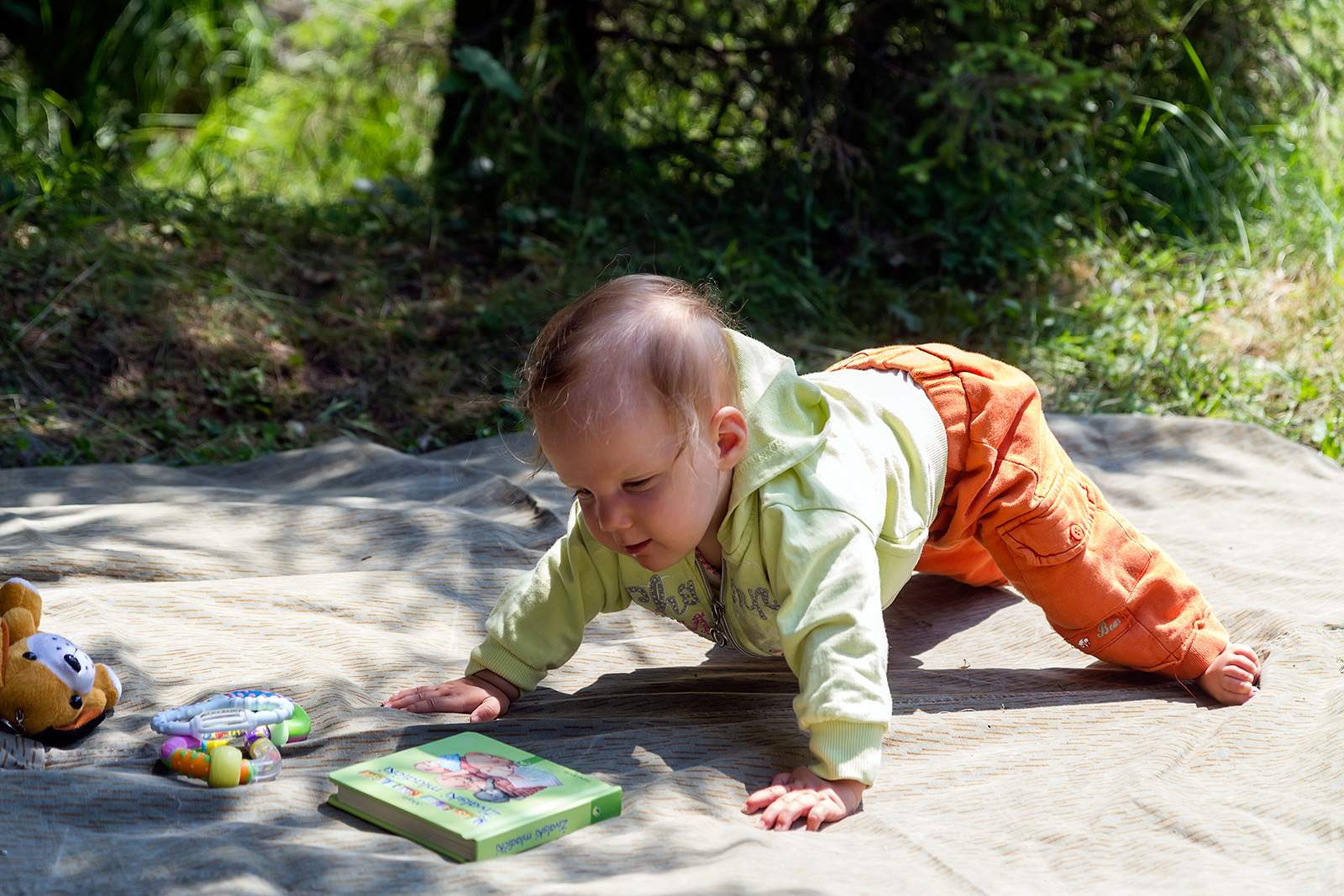 First attempts at crawling. Cheile Jietului near Petrosani, Romania.