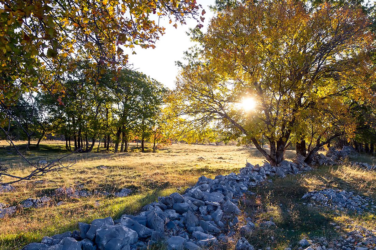 The colours of autumn near Buško Lake, BiH