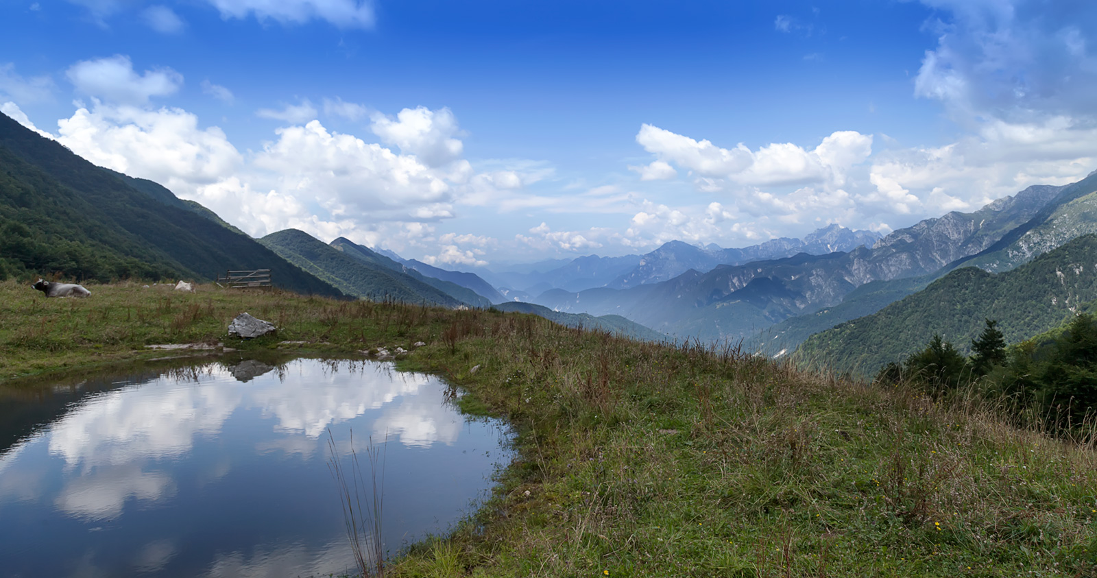 From the pastures of mountain dairy Kot (Coot in italian) you can see the whole valley of Rezija as clear as day