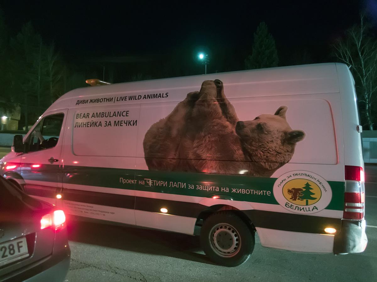 Bear ambulance with a live bear at serbian-bulgarian border
