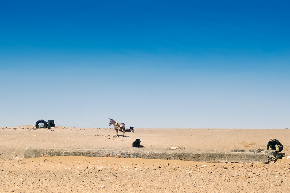 The water well on the plain is the centre of nomadic existence and essential to survival.