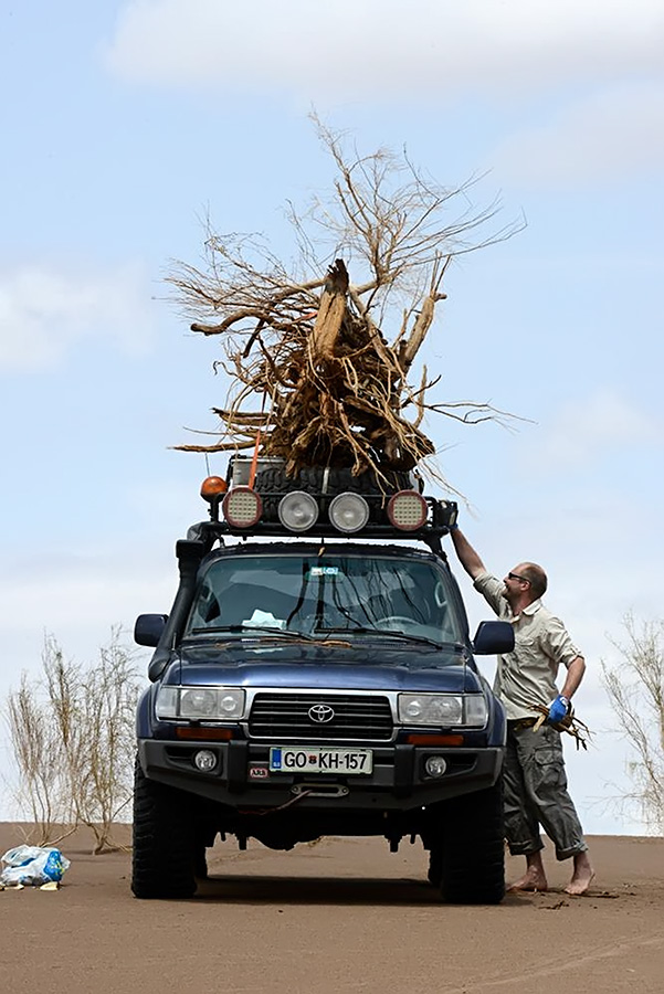 Collecting firewood for the fire in the bivouac