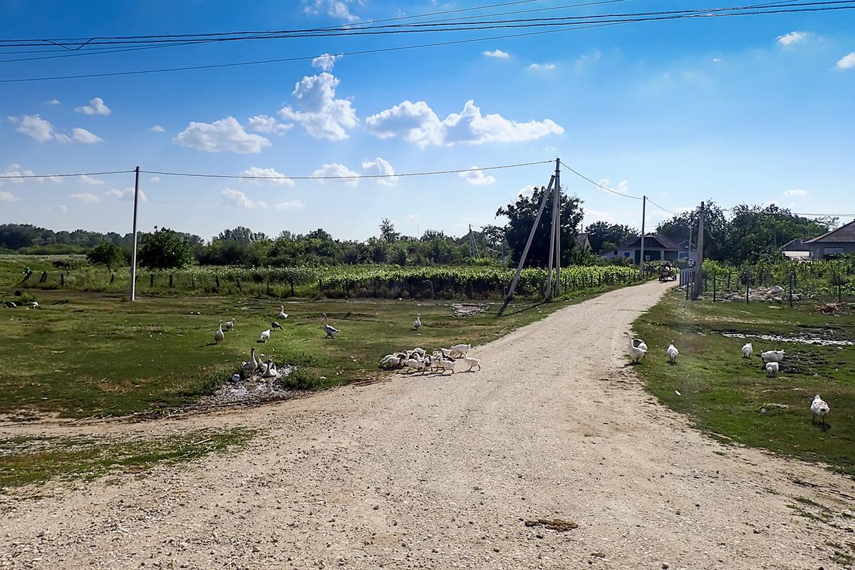 Tipična vaška cesta v Moldovi